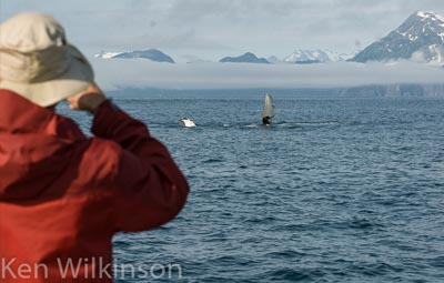Alaskan Tours Planning
