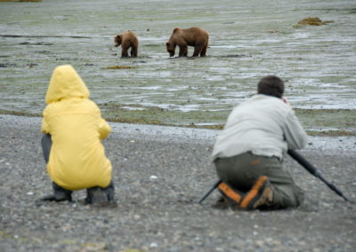 Katmai Small Group Bear Viewing