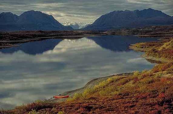 Alaska summer tours