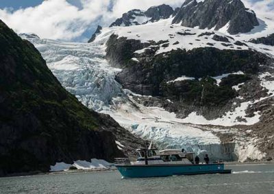 Small Boat Glacier Wildlife Cruises