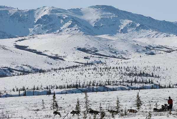 Alaska Winter Tours