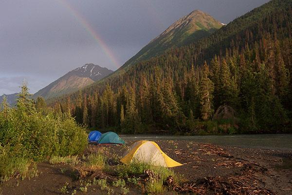 alaska summer tours camping